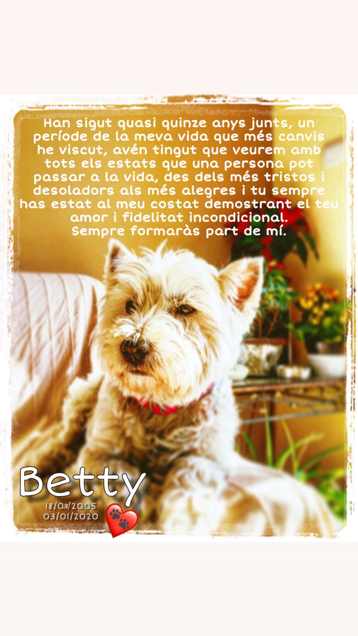 Homenatje Betty